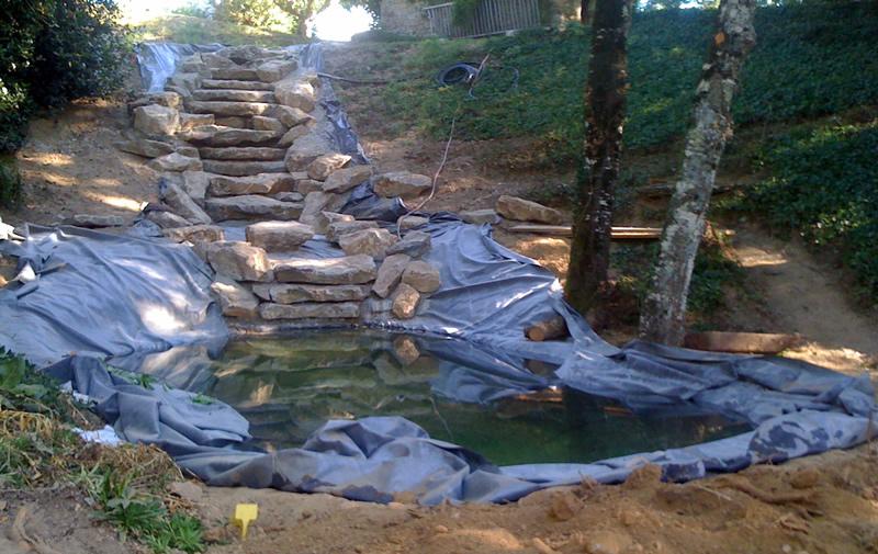 eps am nagement d un bassin avec cascade. Black Bedroom Furniture Sets. Home Design Ideas